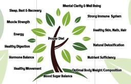 """Getting to the root of your """"true"""" health"""